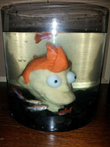 """Head in a jar"" aquarium"